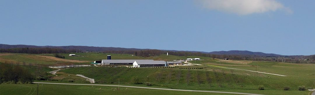 New dairy at Kentland Farm